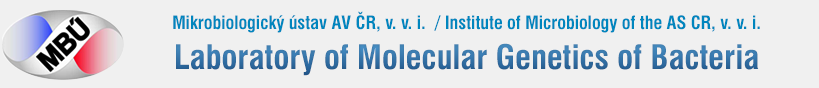 Laboratory of Molecular Genetics of Bacteria Logo